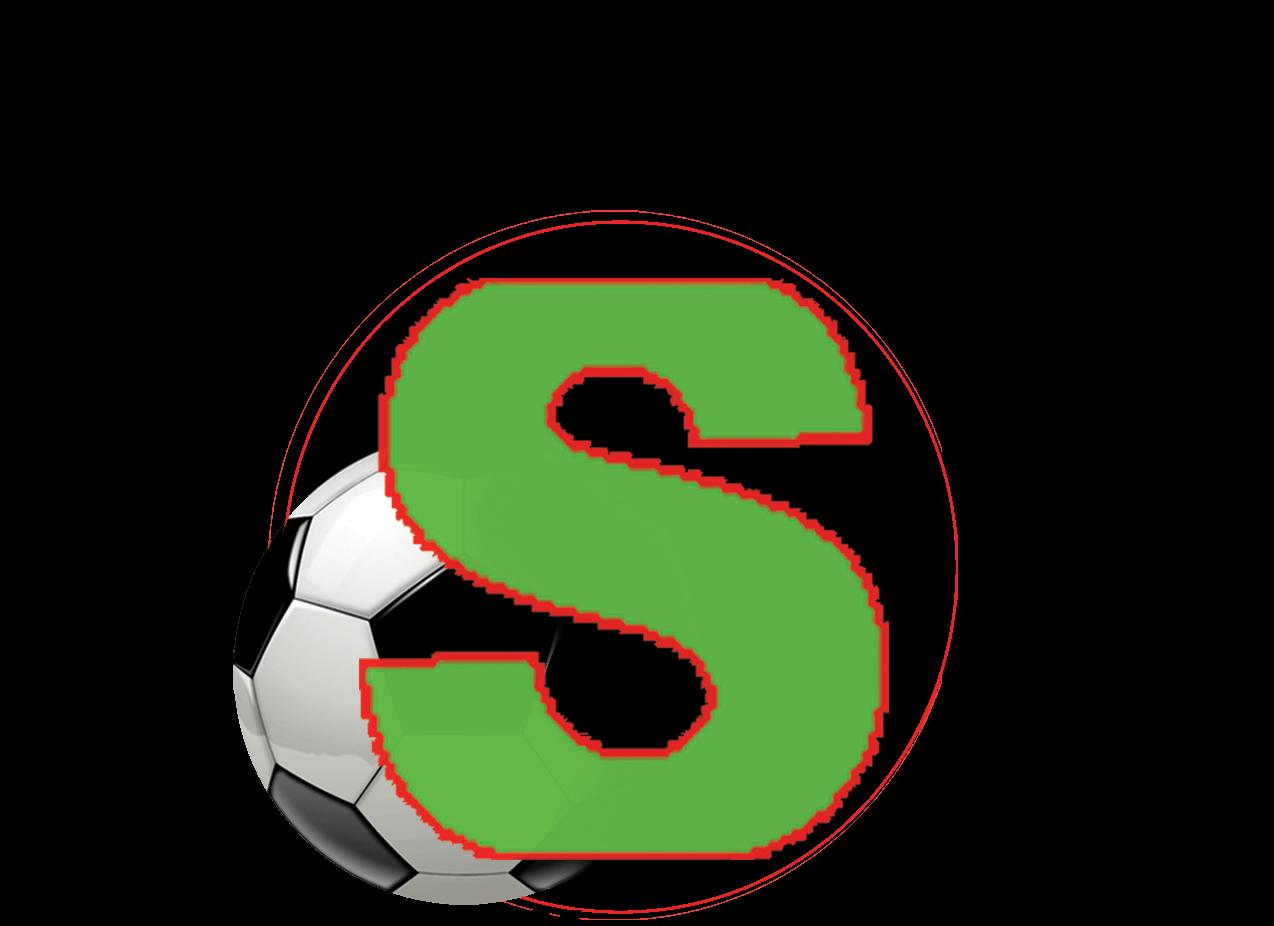 Logic Sport Net